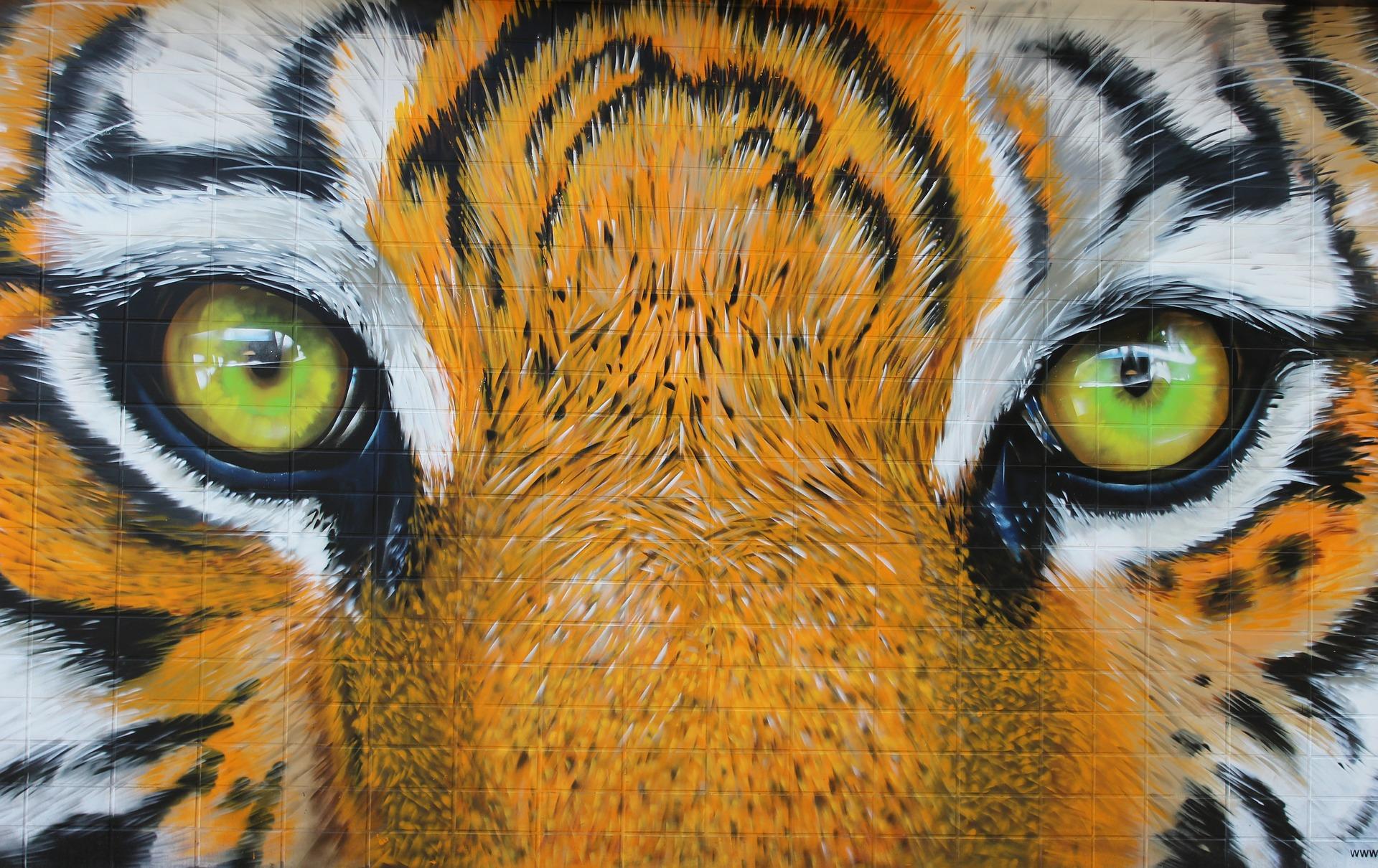imagem de um quadro escolar com www escrito